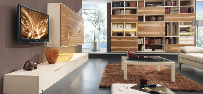 living-room-bookcase-700x324
