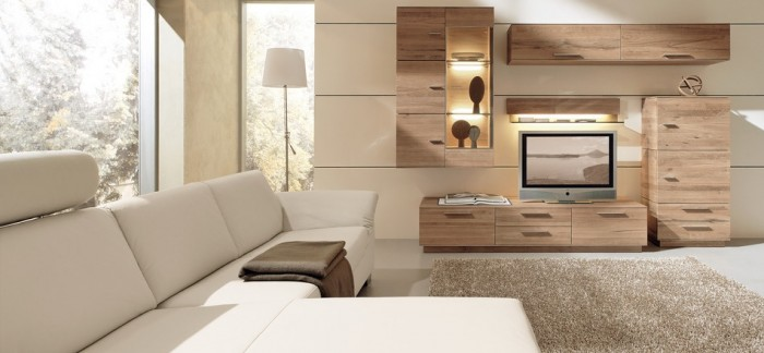 modern-living-room-woods-700x324