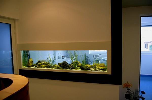 simple fish tank ideas