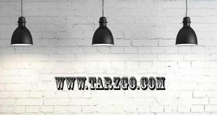 tarzgo-732x335